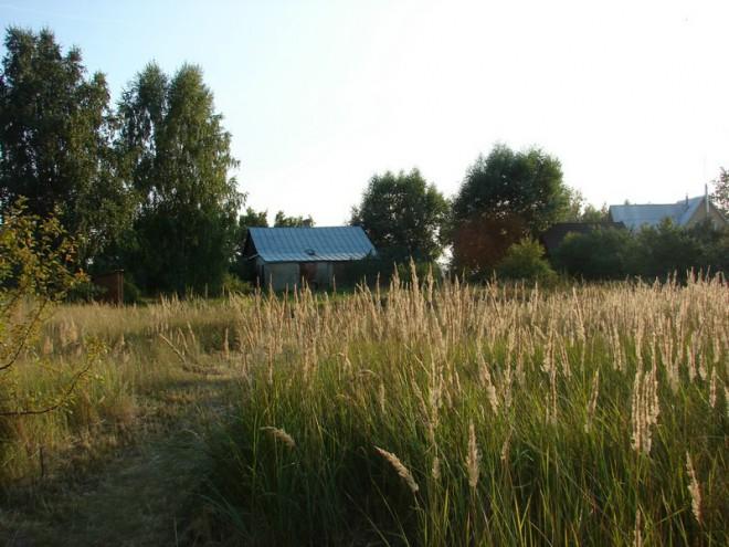 Дом Тарковского. Фото